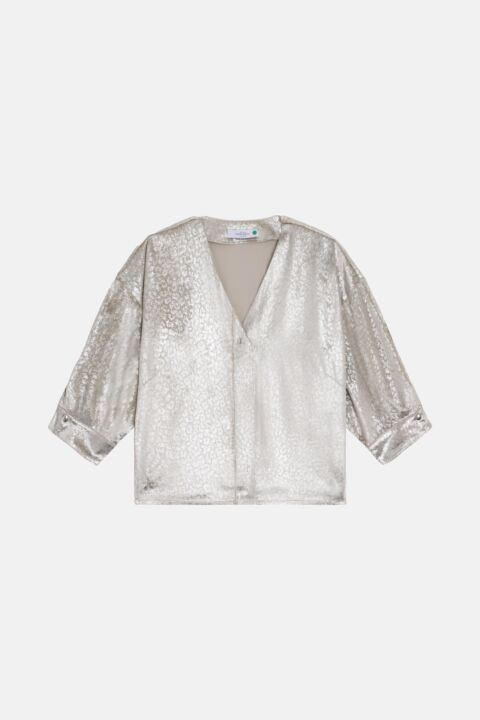 Metallic velvet blouse